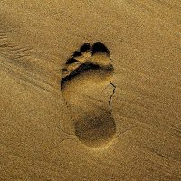 Thankful Thursday: Footprints in the Sand